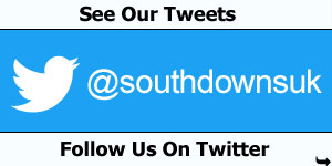 See Our Tweets & Follow Us On Twitter